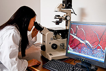A woman looks through a microscope
