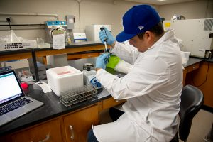 student sitting at a lab bench using a pipette