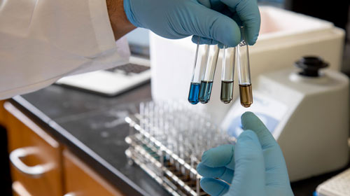photo of a researcher's hand holding several test tubes