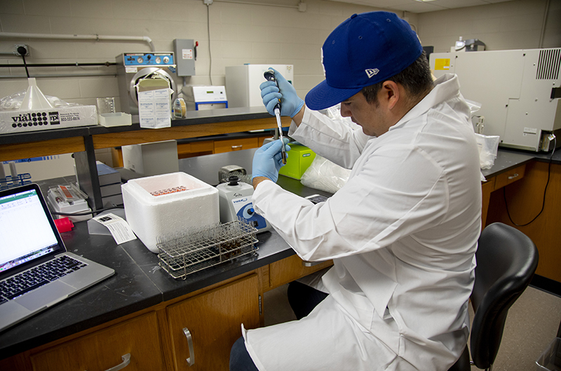 A young man wearing a lab coat and a baseball cap works with test tubes