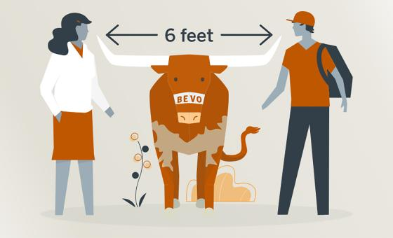 "Illustration of Bevo standing between two people with the phrase ""6 feet"" above his horns."