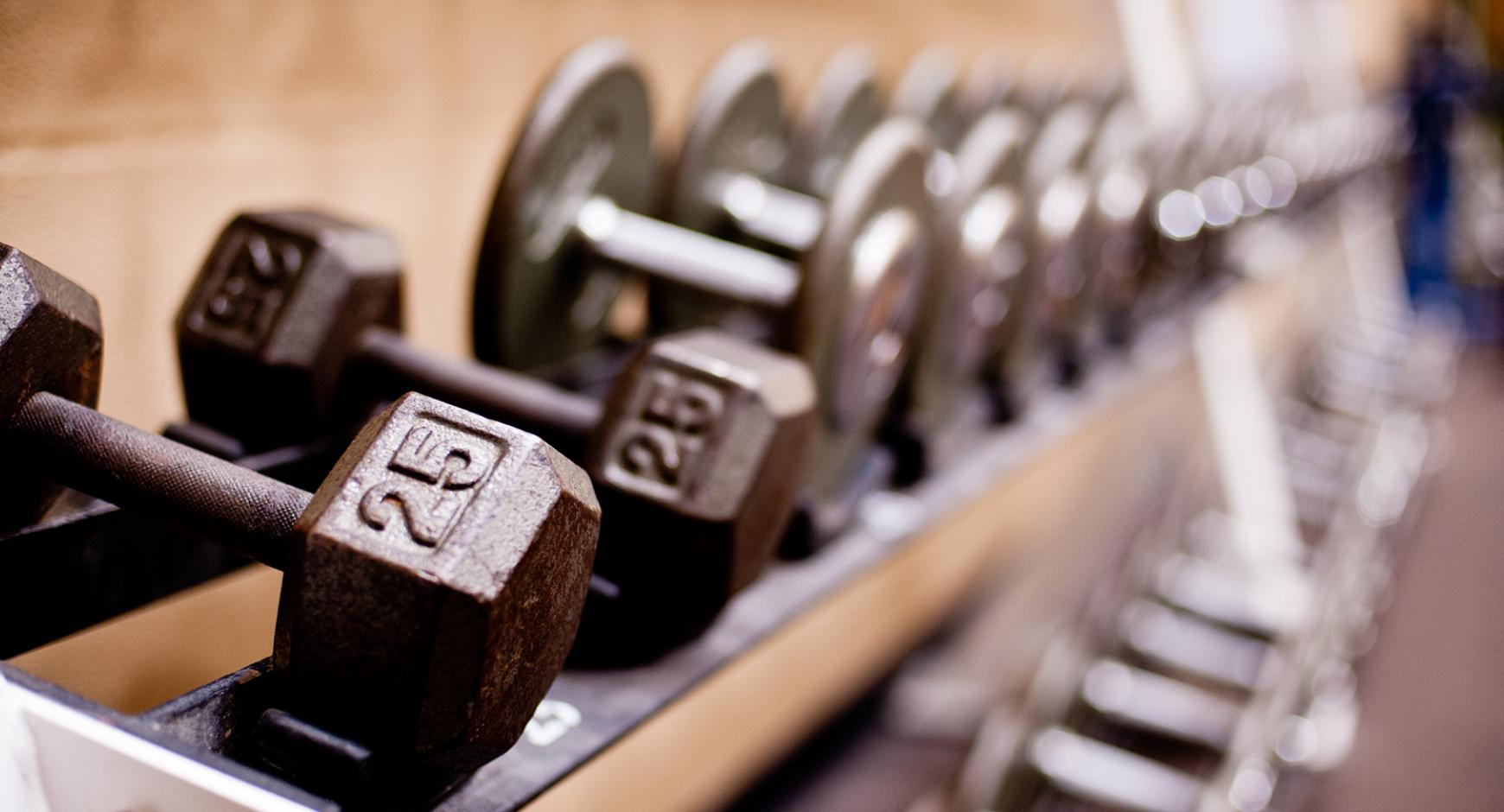 Dumbbells resting on a rack